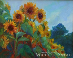 Rosebank Farm Sunflowers